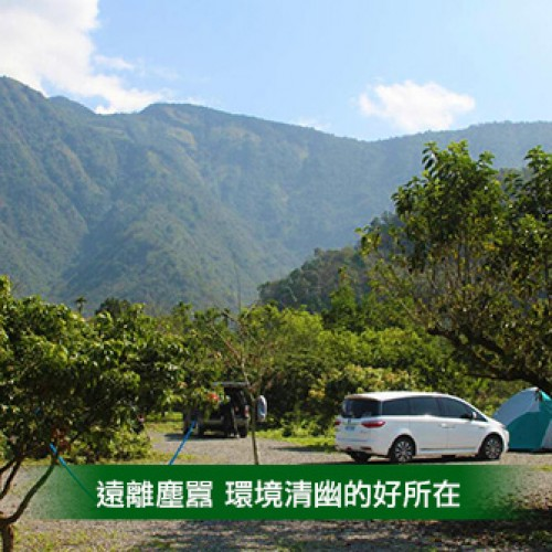 南投埔里 福長果園露營區