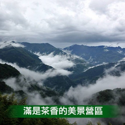 桃園復興 海萍露營區